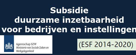 Duurzame inzetbaarheid, subsidies